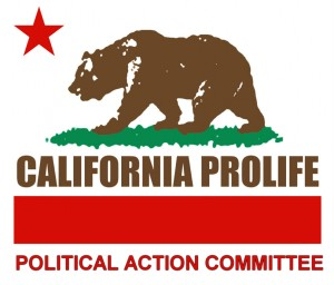 Political Action Committee Logo