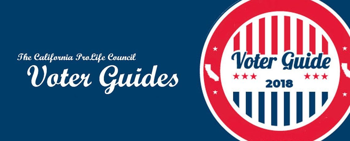 Voter Guides 2018